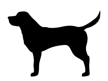 Illustration pour Vector black silhouette of a labrador retriever dog isolated on a white background. - image libre de droit