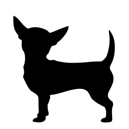 Ilustración de Vector black silhouette of a Chihuahua dog isolated on a white background. - Imagen libre de derechos