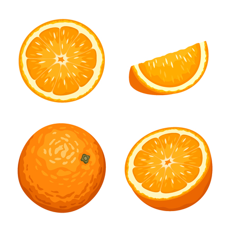 Illustration pour Vector illustration of whole and sliced orange fruits isolated on a white background. - image libre de droit