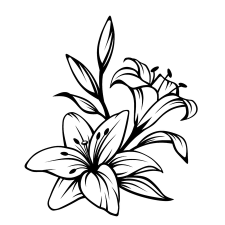 Illustration pour Vector black contour of lily flowers isolated on a white background. - image libre de droit