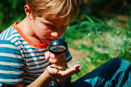 Foto de kids learning - child exploring dragonfly with magnifying glass - Imagen libre de derechos