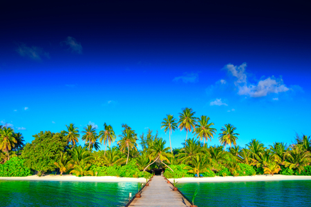 Photo pour Dream island on Maldives - image libre de droit