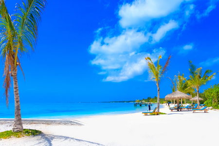 Photo for Dreamscape Escape On Maldives - Royalty Free Image