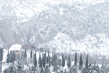Foto de Winter Landscape - Imagen libre de derechos