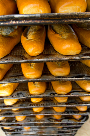 Photo for In the bread factory - Royalty Free Image