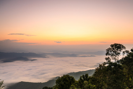 Photo for Doy-sa-merh-dow, Landscape sea of mist in national park of Nan province  Thailand. - Royalty Free Image