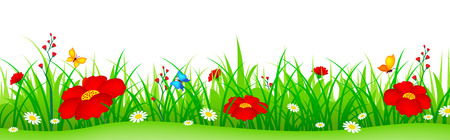Illustration pour Green grass with cute colorful spring flowers illustration isolated white background. Can use as web site header / Footer / banner. flower bed - image libre de droit
