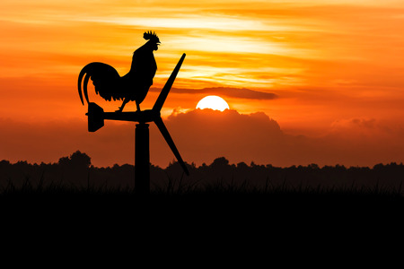 Foto de silhouette of roosters crow stand on a wind turbine. In the morning sunrise background - Imagen libre de derechos