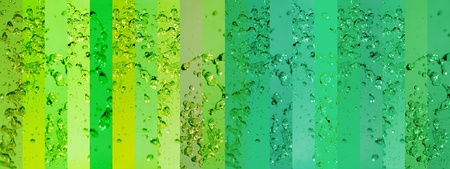 Long background with banners in green palette with drops splash
