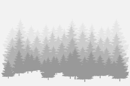 Illustration pour Misty pine forest. Vector background. - image libre de droit