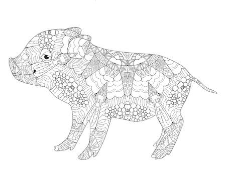 Photo pour Pig with zen art design for coloring book illustration. - image libre de droit