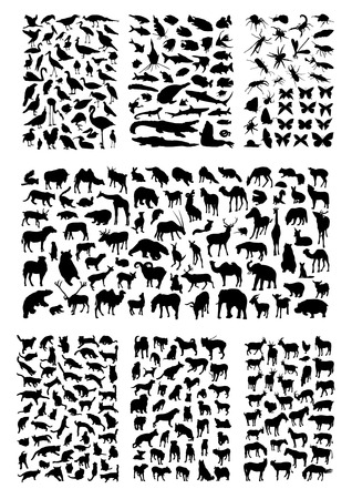 Photo pour Big animals silhouettes set - image libre de droit