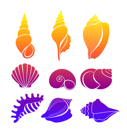 Illustration pour Set of seashells, bright colored sea shells silhouette isolated on white background vector illustration. - image libre de droit