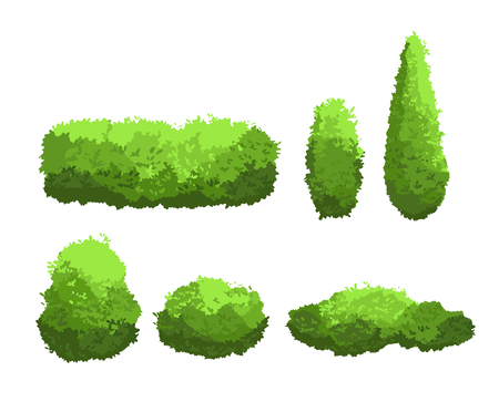 Ilustración de Vector illustration set of garden green bushes and decorative trees different shapes. Shrub and bush collection in cartoon style isolated on white background. - Imagen libre de derechos