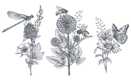 Illustration for Set of three vector floral bouquets with black and white hand drawn herbs, wildflowers and insects - Royalty Free Image