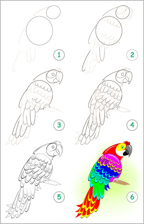 Illustration pour Page shows how to learn step by step to draw a cute parrot. Developing children skills for drawing and coloring. - image libre de droit