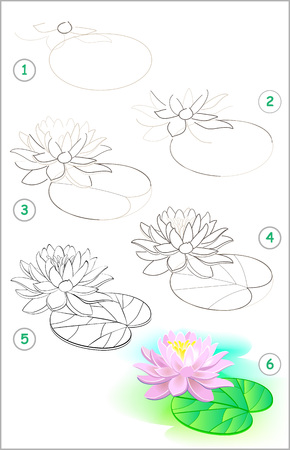 Illustration pour Page shows how to learn step by step to draw a water lily flower. Developing children skills for drawing and coloring. Vector image. - image libre de droit