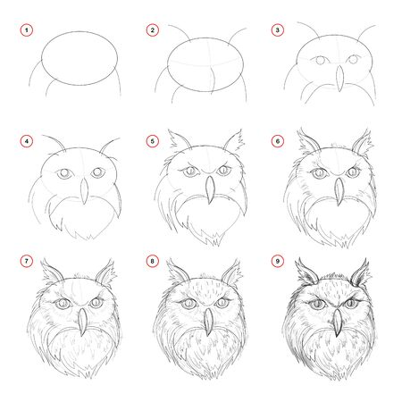 Illustration pour Creation step by step pencil drawing. Page shows how learn to draw sketch of imaginary owls head. Print for artists school textbook. Developing skills for design. Hand-drawn vector image. - image libre de droit