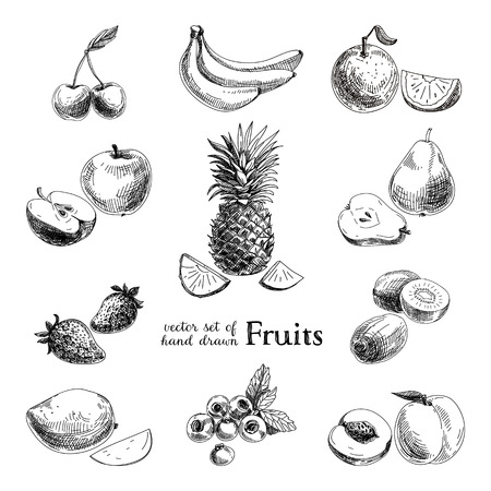 Ilustración de Vector set of hand drawn vintage  fruits and berries. Retro illustration. - Imagen libre de derechos