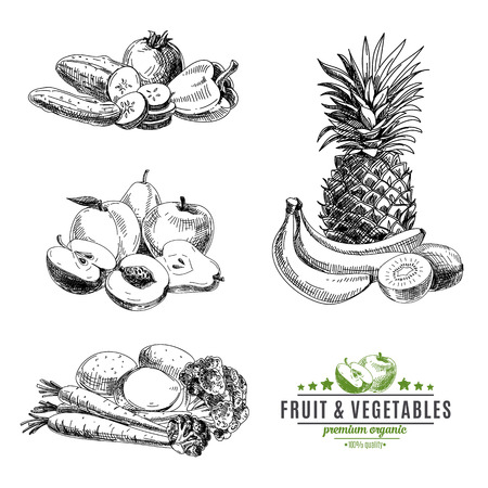 Foto für Vector set of fruit and vegetables. Healthy food. Vector illustration in sketch style. Hand drawn design elements. - Lizenzfreies Bild