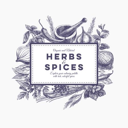 Ilustración de Vector background with hand drawn herbs and spices. Organic and fresh spices illustration. - Imagen libre de derechos