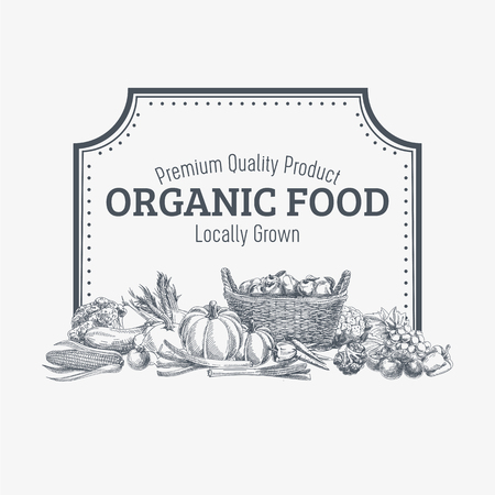 Illustration pour Vector background with hand drawn organic food. Vegetable and fruits spices illustration. - image libre de droit