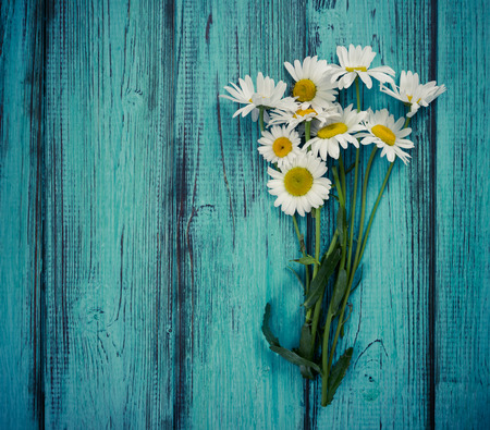 Photo for Bouquet of chamomiles on blue vintage wooden background. Flat lay. Top view. - Royalty Free Image
