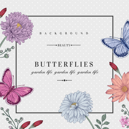 Foto de Vector card with two butterflies and flowers in pastel colors. Romantic summer background. Aster chrysanthemum daisy. - Imagen libre de derechos