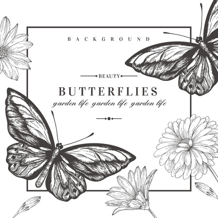 Illustration for Vector card with butterflies and flowers. Black and white illustration. - Royalty Free Image