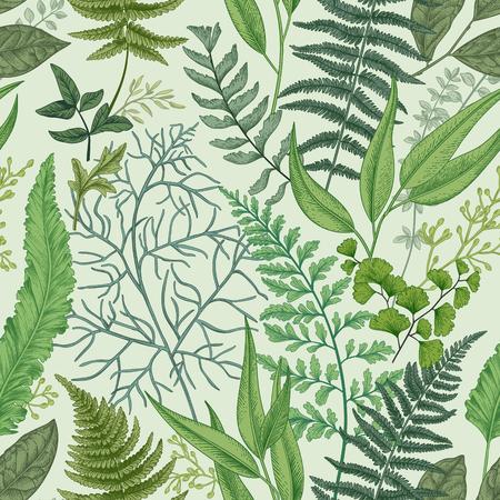 Ilustración de Seamless pattern with different ferns and leaves. Vintage floral background. Botanical illustration. - Imagen libre de derechos