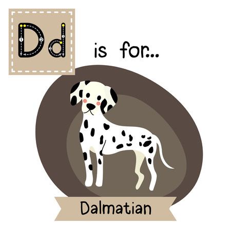 D letter tracing. Standing Dalmatian. Cute children zoo alphabet flash card. Funny cartoon animal. Kids abc education. Learning English vocabulary. Vector illustration.