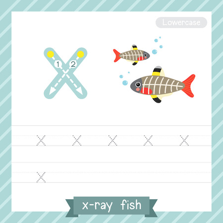 Ilustración de Letter X lowercase tracing practice worksheet with X-ray fish for kids learning to write. Vector Illustration. - Imagen libre de derechos