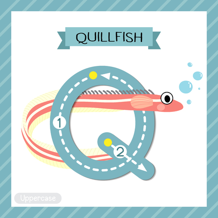 Ilustración de Letter Q uppercase cute children colorful zoo and animals ABC alphabet tracing flashcard of Quillfish for kids learning English vocabulary and handwriting vector illustration. - Imagen libre de derechos