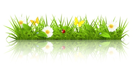 Illustration pour Green grass - image libre de droit