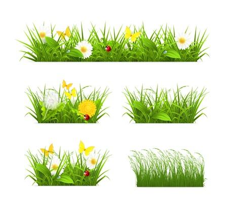 Illustration pour Grass set - image libre de droit