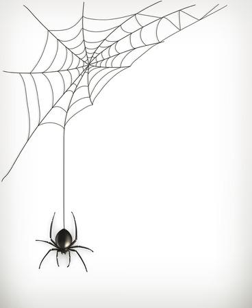 Ilustración de Spider web vector - Imagen libre de derechos