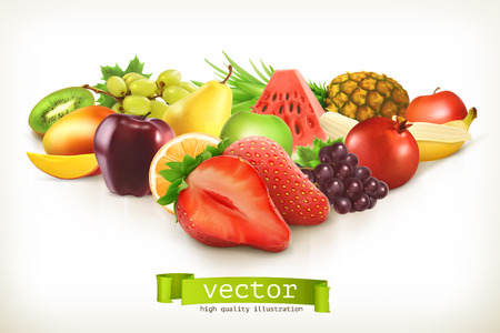 Photo for Harvest juicy fruit and berries, vector illustration isolated on white - Royalty Free Image