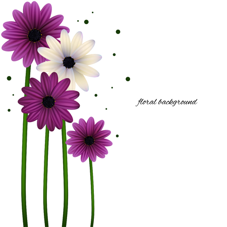 Illustration for Floral background can be use for frames and cards. Gerberas, daisies, plants, flora vector illustration. - Royalty Free Image