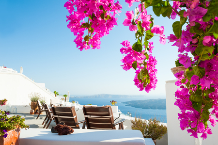 Photo for Beautiful terrace with flowers, sea view. Santorini island, Greece. - Royalty Free Image