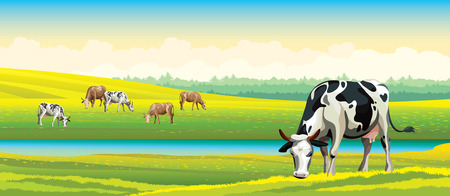 Illustration pour Herd of cows in green field on a cloudy sky. Vector rural landscape. - image libre de droit