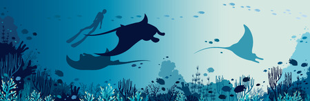 Illustration pour Silhouette of freediver and three mantas swimming near the coral reef and fishes. Underwater marine wildlife. Vector sea illustration. - image libre de droit