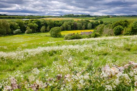 Foto de Summer english rural landscape with flower field rolling hills and stormy sky in background.  Southern England, UK - Imagen libre de derechos