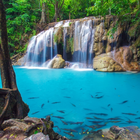 Photo pour Deep forest Erawan Waterfall, Kanchanaburi, Thailand  - image libre de droit