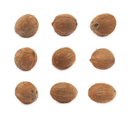 Photo for Single whole coconut isolated over the white background, set of nine different foreshortenings - Royalty Free Image