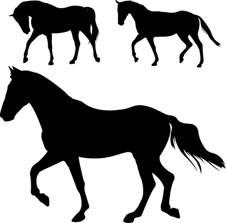 horses silhouettes - vector