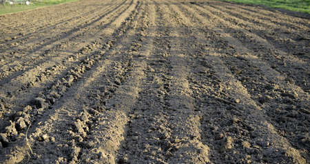 Photo pour fresh plowed field prepared for plantig vegetables,image - image libre de droit