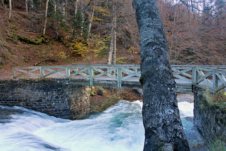 Photo for River in Ordesa National Park, Pyrenees, Huesca, Aragon, Spain - Royalty Free Image