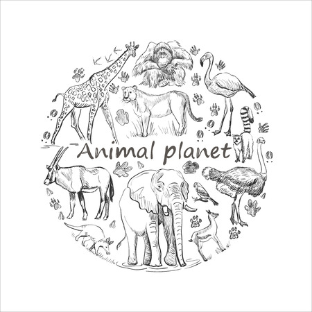 Photo pour Hand drawn save animals emblem, animal planet, animals world. Cute animals in a circle shape - image libre de droit