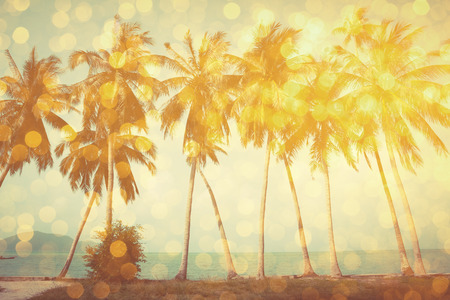 Photo for Palm trees on tropical beach with golden party glamour bokeh overlay, double exposure effect stylized - Royalty Free Image