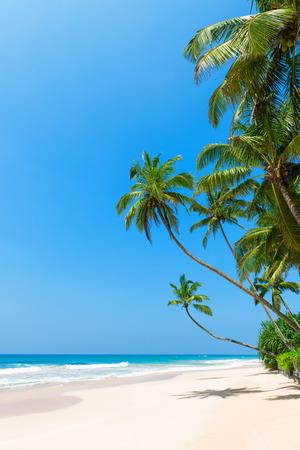 Foto de Tropical beach with palm trees on ocean shore and clean sand at sunny day - Imagen libre de derechos